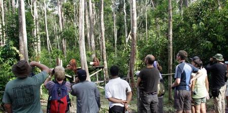 wisata Kalimantan Tengah